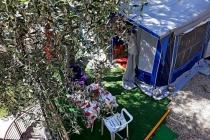 caravan-rental-lake-garda-camping-le-maior-caravan-bellini-06