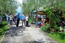 camping-gardasee-brenzone-sport-aktivitaeten-005
