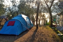 camping-gardasee-brenzone-sul-garda-le-maior-stelplatz-003