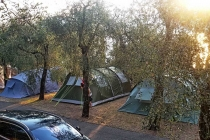 camping-gardasee-brenzone-sul-garda-le-maior-stelplatz-004